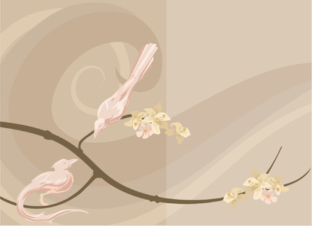 Dove background Vector