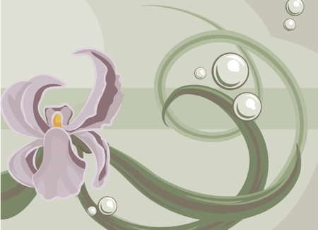 Orchid background design element Vector