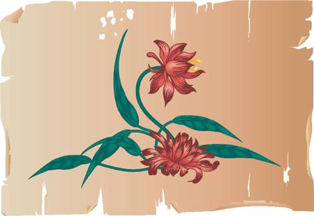 vector message: Floral design element on parchment.