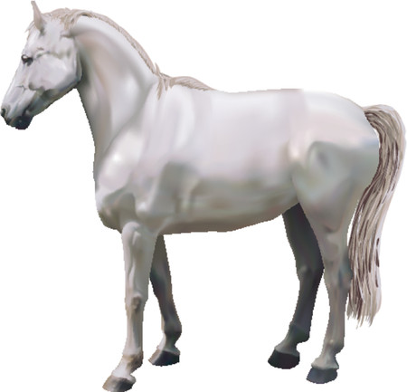 photorealistic: Horse. A photorealistic illustration of a horse. Created with meshes.
