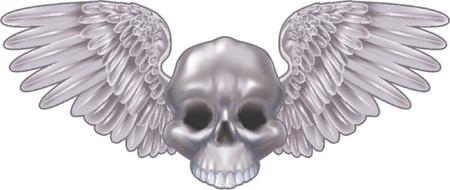 skull logo: Winged metallic skull motif. An illustration of a winged metallic skull design element