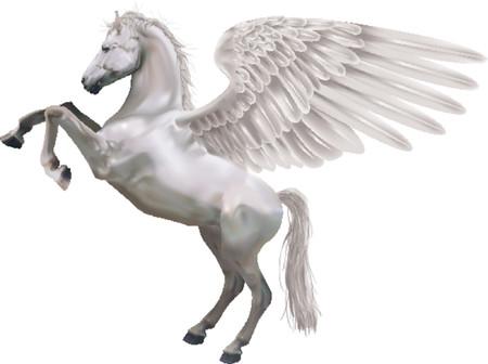 pegaso: Pegasus. Un ejemplo del caballo mitol�gico Pegaso hasta en la crianza de sus patas traseras.