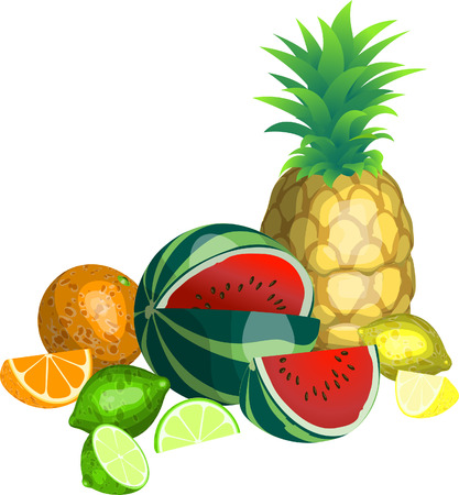 Tropical Fruit. Some tropical fruit Stock Vector - 1440395