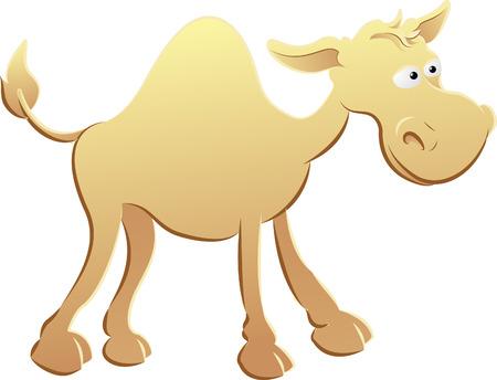 hump: camel illustration. An illustration of a cute camel character Illustration