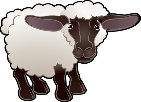rams horns: A cute sheep farm animal vector illustration Illustration