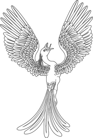 fenix: A black and white phoenix in a pose with its wings outstretched and spread widely.