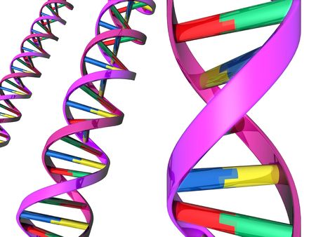 Illustration of colorful DNA double helixes illustration