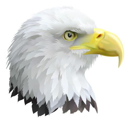 halcones: Ilustraci�n de una cabeza de �guilas en perfil.