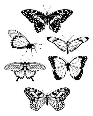 butterfly tattoo: Un conjunto de siluetas de esquema de hermosa mariposa estilizada