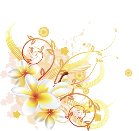 golden daisy: Una ilustraci�n de fondo floral vectorial muy elegante, con flores de Plumeria Frangipani. Vectores