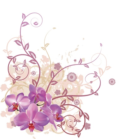 A very stylish vector floral background illustration with pink orchid flowers. Vector