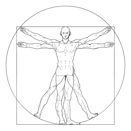 art of eight limbs: Illustration based on Leonardo da Vincis classic Vitruvian man