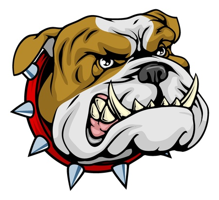 angry dog: Mean looking illustration of classic British bulldog face
