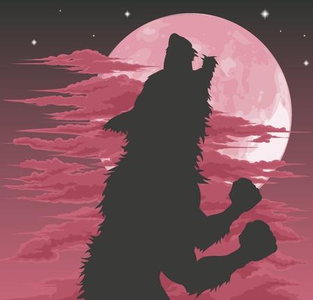 lupo mannaro: Una silhouette lupo mannaro spaventosa ululare alla Luna. Illustrazione di Halloween. Vettoriali