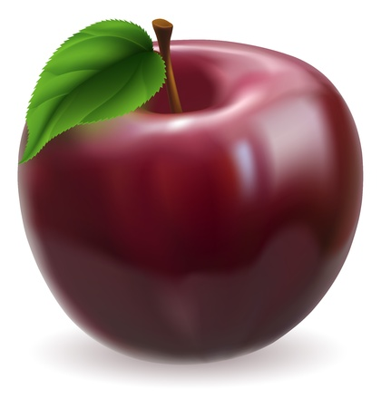 Illustration of a fresh tasty shiny red apple Vector