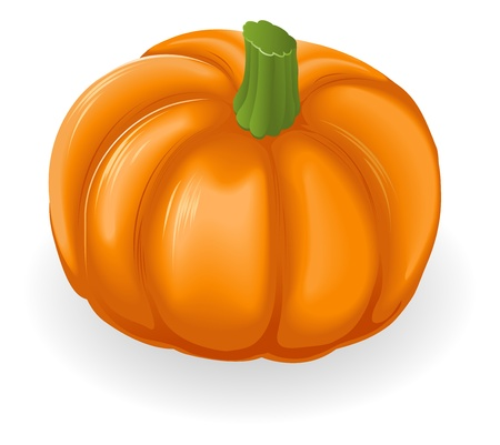 fruit clipart: Illustration of a fresh tasty orange pumpkin