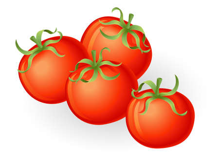 Illustration of a group of fresh tasty tomatos Vector