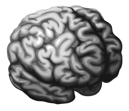 Illustration of a monochrome brain in shades of grey Vector