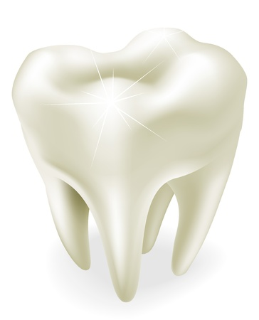whiten: An illustration of a healthy wisdom tooth or molar