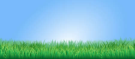 panoramic sky: Green grass field or lawn under a clear blue sky Illustration