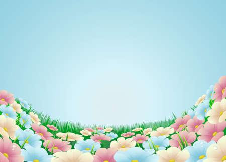 dessin fleur: Sur le terrain ou pr� avec de belles fleurs et de ciel bleu