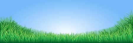 A lush green field meadow or lawn with bright blue sky Stock Vector - 12063489