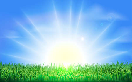 sol naciente: El sol sale o se pone en un hermoso campo verde de la hierba con el cielo azul brillante