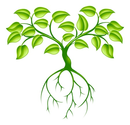 arbol raices: Green concepto de árbol de diseño gráfico con raíces largas