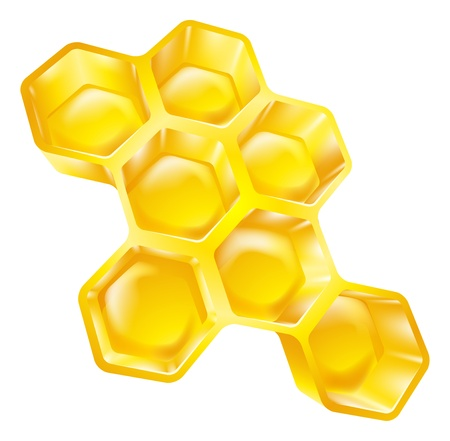 Illustration of bees wax honeycomb full of delicious honey Vector