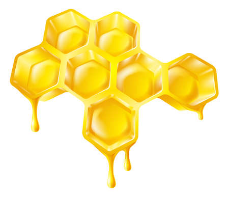 Illustration of bee's honeycomb with honey dripping off it Vector