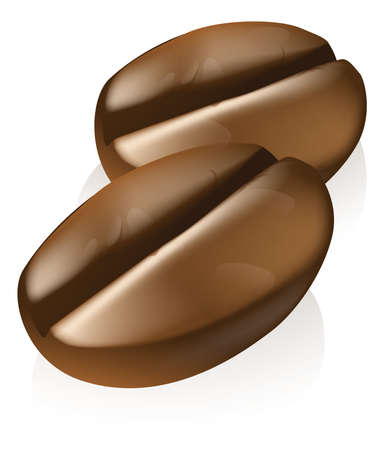 granos de cafe: Una ilustración de dos granos de café del café tostados o semillas