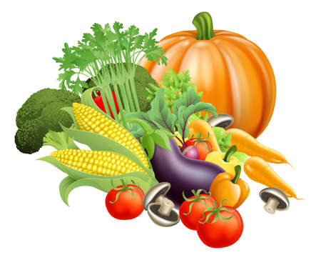 fresh produce: Illustration of produce assortment of healthy fresh vegetables