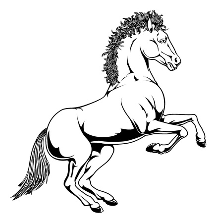 hind: An illustration of a black and white monochrome horse rearing on its hind legs