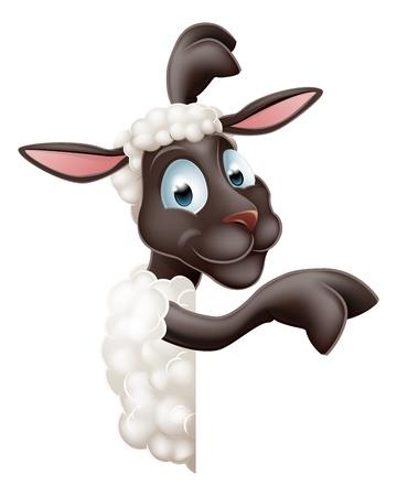 sheep sign: Illustration of a cute sheep or lamb cartoon character or mascot peeking round sign and pointing