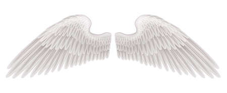freedom wings: An illustration of a pair of beautiful white spread wings.
