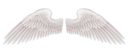 ali angelo: L'illustrazione di un paio di bellissime ali spiegate bianche. Vettoriali