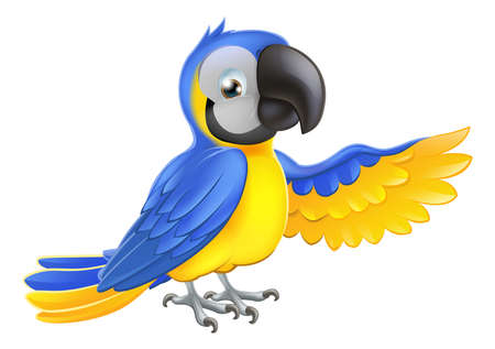 macaw: A blue and yellow macaw parrot pointing or showing something with his wing