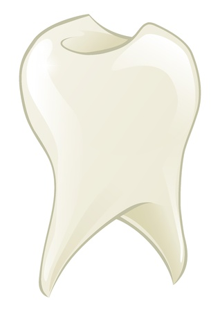 An illustration of a shiny cartoon tooth cartoon tooth Vector