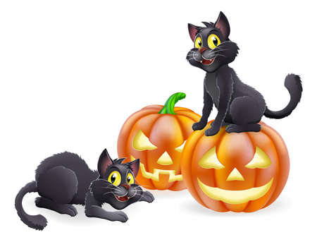 haloween: An illustration of cartoon Halloween black witch cats and Halloween pumpkins Illustration