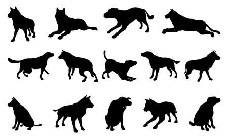 A set of pet dog silhouettes including the dog playing, jumping and walking Vector
