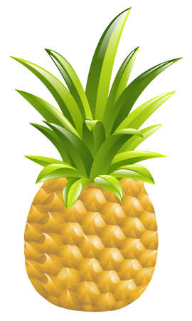 Illustration of a pineapple icon illustration Vector