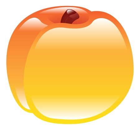 Illustration of shiny peach fruit icon clipart Vector