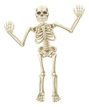 scheletro umano: Disegno di un simpatico cartone animato sventolando carattere scheletro. Grande per Halloween o simili.