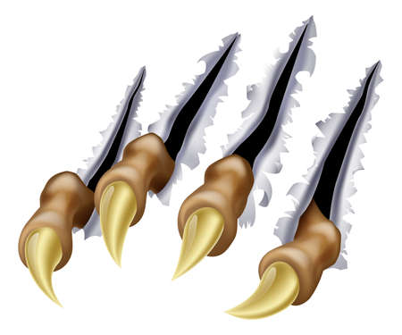 garra: Un ejemplo de una garra de monstruo o de la mano rayar o rasga a través del metal