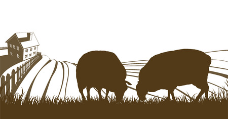 farmhouse: Farm rolling hills landscape with farmhouse and sheep feeding on grass in silhouette Illustration
