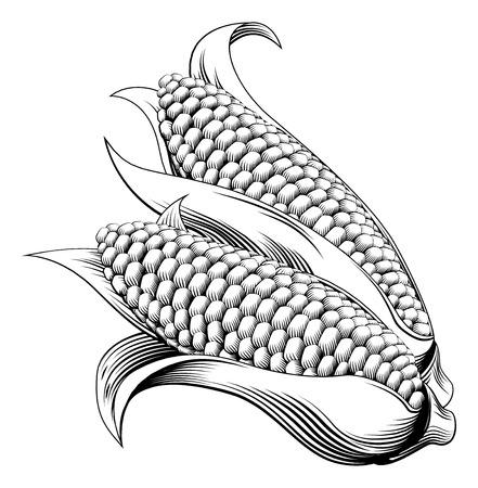 xilografia: Una impresión retro grabado de época o estilo de grabado ilustración maíz dulce