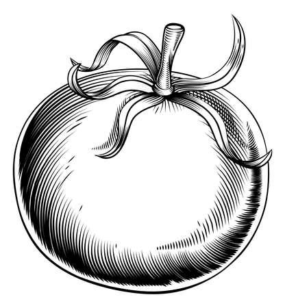 A vintage retro woodcut print or etching style tomato illustration