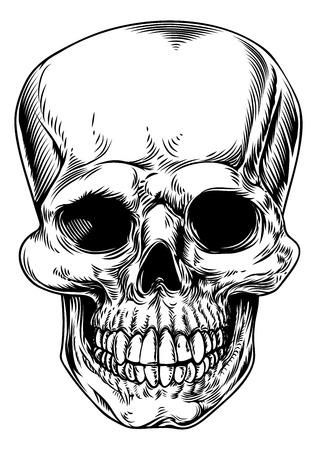 grim: A vintage human skull or grim reaper deaths head illustration  Illustration