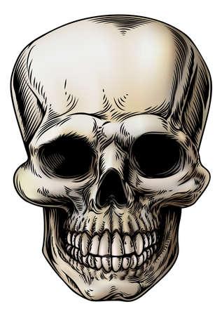 죽은: 빈티지 스타일의 두개골 인간 또는 잔인 사신의 해골 맨 그림