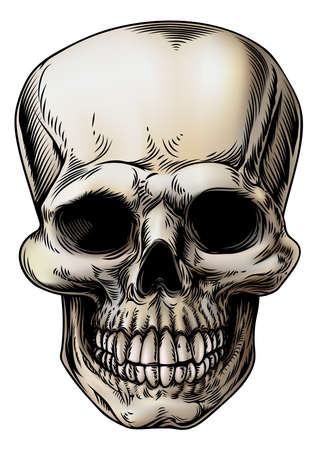 skeleton: A human Skull or grim reaper skeleton head illustration in a vintage style Illustration